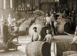 השתלשלות תעשיית היין בישראל - עבר, הווה ומה צופן העתיד