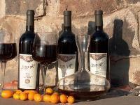 יקב 'עין נשוט' השיק יינות מסדרת קברנה 2007 ושירז צרפתי 2007