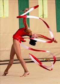 תחרות הגרנד פרי בהתעמלות אמנותית לשנת 2010