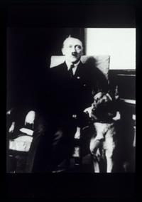 מיני סדרה על היטלר