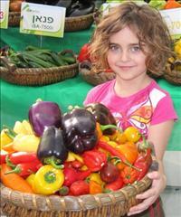פסח בערבה  : הצצה למחקר ולפיתוח החקלאי דרך טיולי משפחות