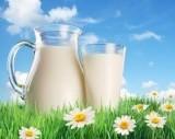 חלב מלא מדוע?