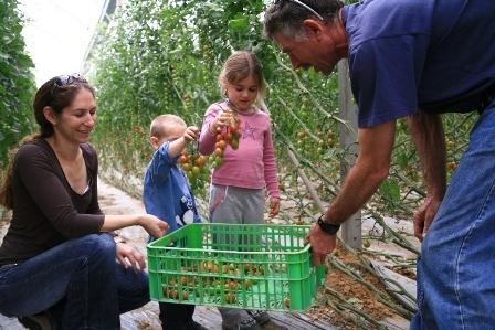 'מהשדה לצלחת' - פסטיבל האוכל החקלאי השני