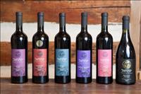 טיול יין בוטיקי ומיוחד לנשים בלבד בגליל המערבי עם מורן עשור