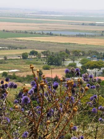 מתארחים בעמק יזרעאל - אתרים, מאכלים ונופים