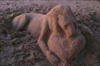 פסטיבל יצירות פיסול בחול בחוף הדולפינריום בל