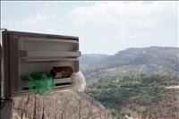 ART DE CORE - תערוכת תצלומים ראשונה מסוגה בישראל
