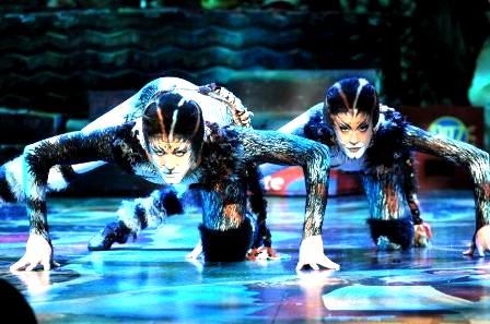CATS - ממחזות הזמר המצליחים בעולם,  מגיע לישראל