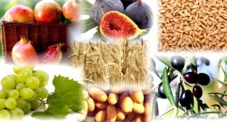 שבעת המינים - יתרונות תזונתיים בסלסלה אחת